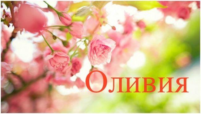 Олівія - комунікабельність, об`єктивність