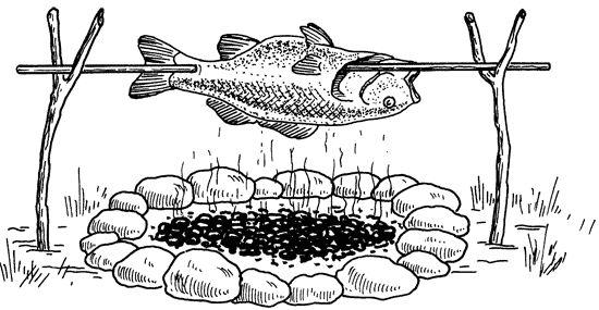 Похідні рецепти приготування риби на багатті