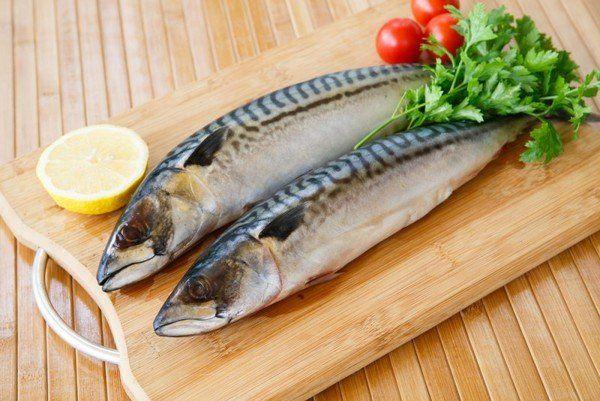 Користь скумбрії, її вітамінний склад і рекомендації щодо вживання цього виду риби