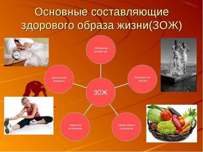Складові здорового способу життя, які необхідно дотримуватися кожній людині