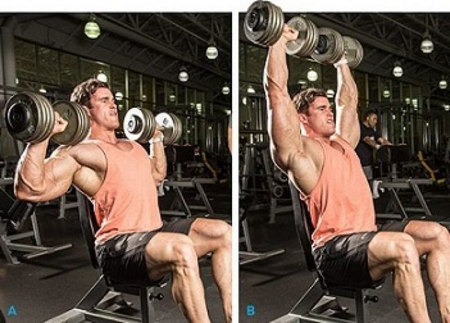 Тренування плечей на масу з гантелями і штангою: основні вправи
