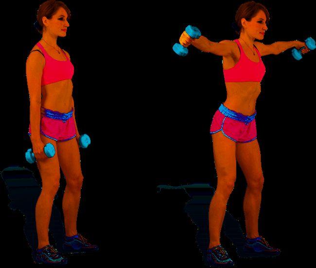 Вправи для плечового пояса з гантелями і штангою, які дають швидкий видимий результат