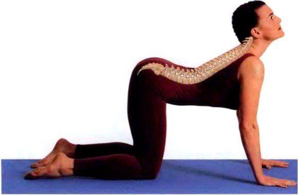 Вправи для спини для жінок, які допомагають зміцнити хребет